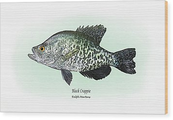 Black Crappie Wood Print by Ralph Martens