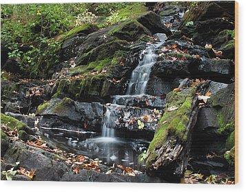 Black Creek Falls In Autumn, 2016 Wood Print by Jeff Severson