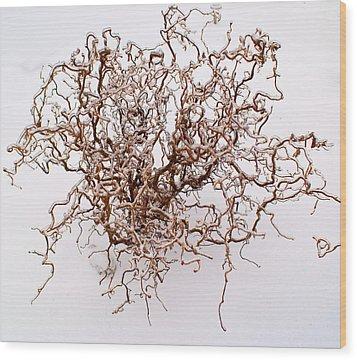 Black Death Virus Wood Print by Douglas Barnett