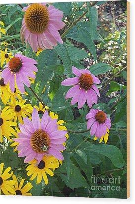 Black Eye Susans And Echinacea Wood Print