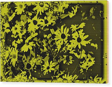 Black Eyed Susan's Wood Print by Bill Cannon