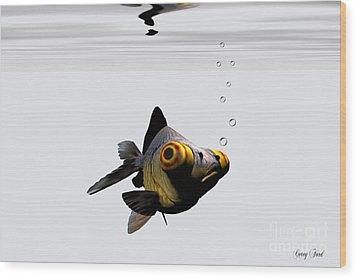 Black Goldfish Wood Print by Corey Ford