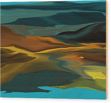 Black Hills Abstract Wood Print by David Lane