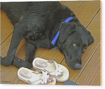 Black Lab Resting Wood Print by Brian Wallace