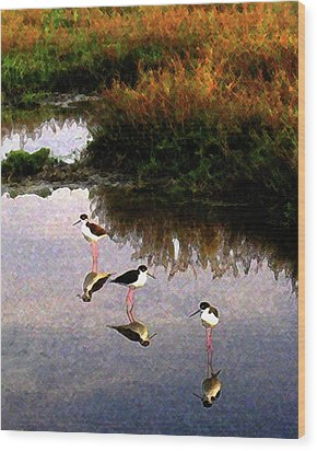 Wood Print featuring the digital art Black-necked Stilts by Timothy Bulone