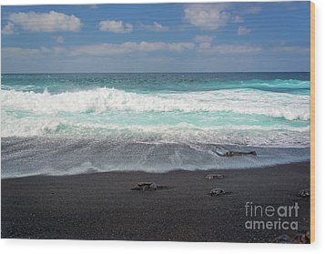 Black Sand Beach Wood Print by Delphimages Photo Creations