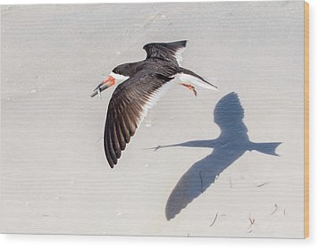 Black Skimmer, Fish And Shadow Wood Print