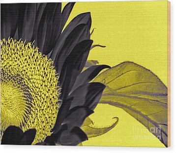 Black Sunflower Wood Print