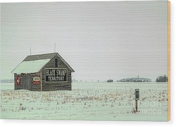 Black Swamp Territory Wood Print by Valencia Photography