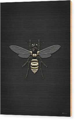 Black Wasp With Gold Accents On Black  Wood Print by Serge Averbukh
