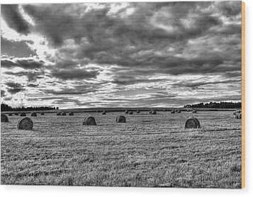 Wood Print featuring the photograph Black-white Hay Day by Gary Smith