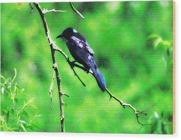 Blackbird Wood Print by Bill Cannon