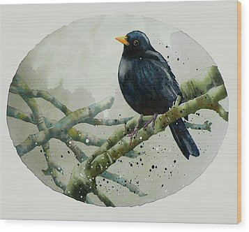 Blackbird Painting Wood Print by Alison Fennell