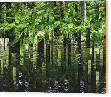 Blackstream Mosaic IIi Wood Print by Anne Havard
