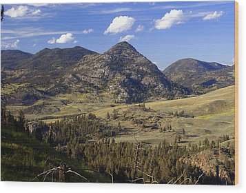 Blacktail Road Landscape 2 Wood Print by Marty Koch