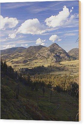 Blacktail Road Landscape Wood Print by Marty Koch