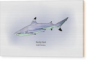 Blacktip Shark Wood Print by Ralph Martens