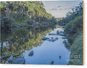 Blackwood River Rocks, Bridgetown, Western Australia Wood Print by Elaine Teague