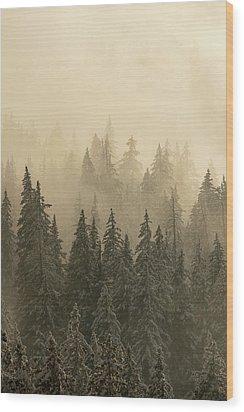 Blanket Of Back-lit Fog Wood Print by Dustin LeFevre