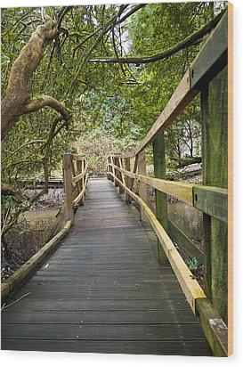 Blarney Boardwalk Wood Print by Rae Tucker