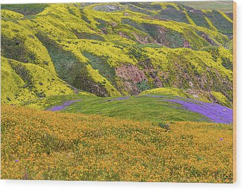 Wood Print featuring the photograph Blazing Star On Temblor Range by Marc Crumpler