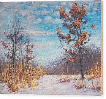Blazing Winter Grasses Wood Print by Christine Camp
