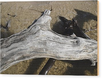 Bleached Driftwood Wood Print by Mary Haber