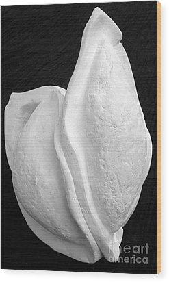 Bleached Husk Wood Print by Xoey HAWK