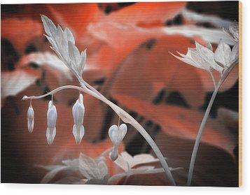 Bleeding Hearts Wood Print