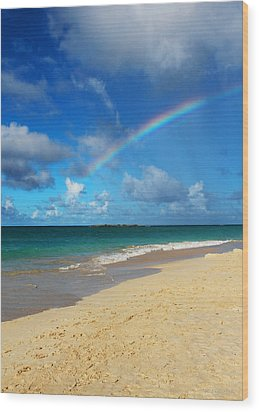 Blessed With A Rainbow Wood Print by Kerri Ligatich