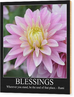 Blessings Dahlia Wood Print by P S