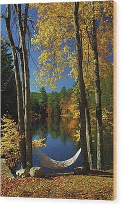Bliss - New England Fall Landscape Hammock Wood Print by Jon Holiday