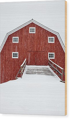 Blizzard At The Old Cow Barn Wood Print by Edward Fielding