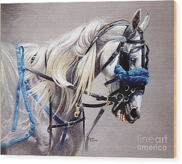 Blizzard Babe Wood Print by Carrie L Lewis