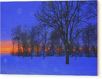 Blizzard Blues 2 Wood Print by Julie Lueders