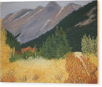 Blm Land Wood Print