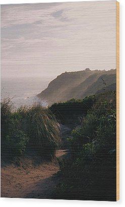 Block Island Wood Print by John Scates