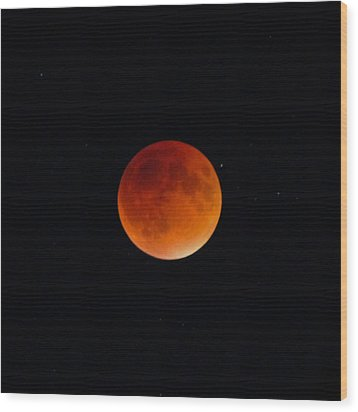Blood Moon 2 Wood Print by Cathie Douglas