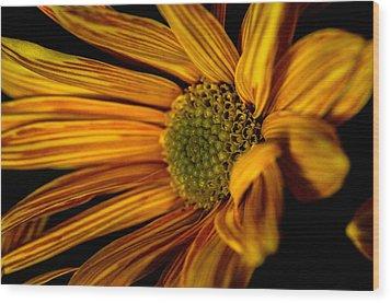 Bloom Bloom Wood Print