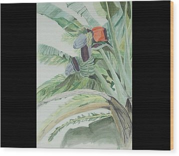 Blooming Banana Wood Print by Hilda and Jose Garrancho