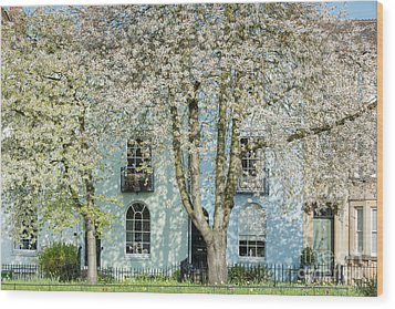 Wood Print featuring the photograph Blooming Oxford by Tim Gainey