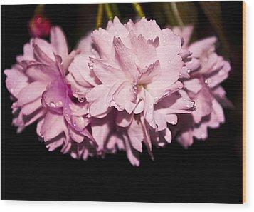 Blossom Wood Print by Svetlana Sewell
