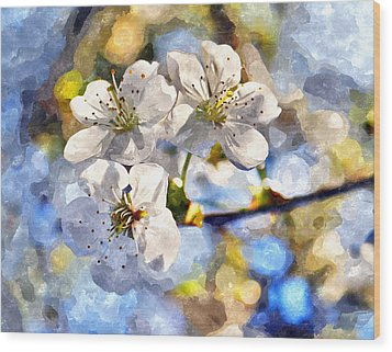 Blossoming Cherry And Morning Sunlight Watercolor Wood Print