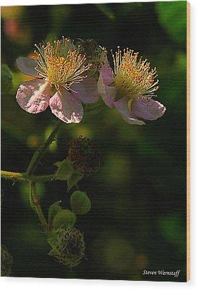 Blossoms 3 Wood Print by Steve Warnstaff