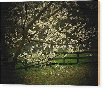 Blossoms Fence Wood Print by Michael L Kimble