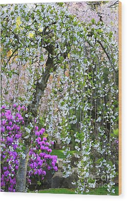 Blossoms Galore Wood Print by Carol Groenen