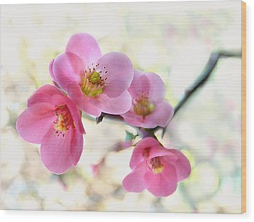 Blossoms Wood Print by Marion Cullen