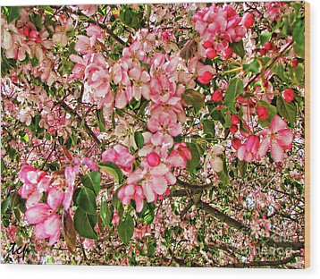 Wood Print featuring the photograph Blossoms by Traci Cottingham