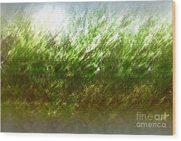 Wood Print featuring the photograph Blowing In The Wind by John Krakora