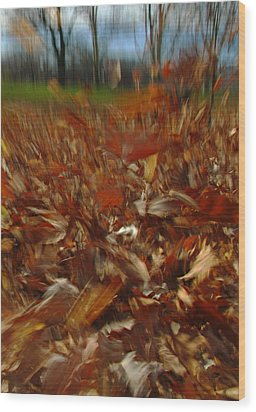Blowing In The Wind Wood Print by Juergen Roth